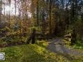 Herbst_2016-7 (Kopie)